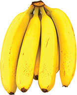 banana_creative_commons_wikipedia